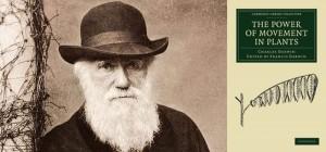 Charles Darwin: El poder del movimiento en las plantas, 1880.