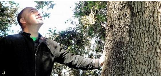 Entrevista a Xavi Callejo sobre los Árboles Maestros, Conciencia Arbórea