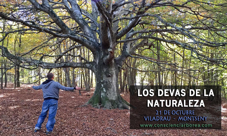 Los Devas de la Naturaleza